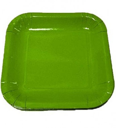 Lime Green Square Dessert Plates (20)
