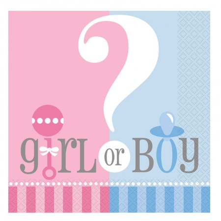 Gender Reveal Lunch Napkins (20)