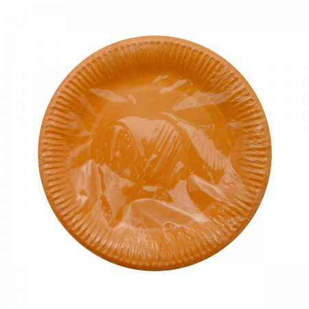 Orange Round Lunch Plates (8)