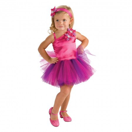 Fairy Tutu Dress Costume (1)