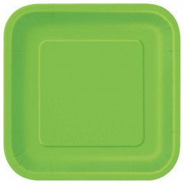 Lime Green Square Lunch Plates (14)
